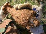 В Верхнеднепровском районе нашли застарелую мину