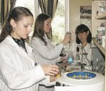 На Дніпропетровщині визначені 15 переможців губернаторського конкурсу проектів «Молоді вчені – Дніпропетровщині»